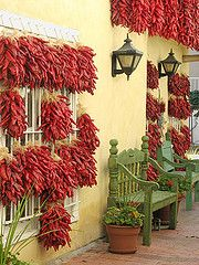 drying chilis, old town, Albuquerque, New Mexico. I've lived here for 40 years. Have fun walking around Old Town. New Mexico Style, New Mexico Usa, New Mexico Homes, Mexico Food, Beautiful World, Beautiful Places, Beautiful Gardens, Foto Poster, Albuquerque News