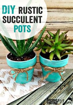 Want easy decorating ideas for spring? There's no need to have exceptional DIY skills to craft these DIY rustic succulent pots, and it's no problem if you don't have a green thumb either. Succulent plants require little water and are low maintenance, making them perfect for any gardener. These adorable succulent pots are a great way to bring the outdoors inside especially for those with limited outside space like apartment dwellers.