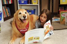 Dog Therapy 101 | American Libraries Magazine