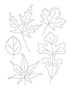 How To Draw Leaves Contour Leaf Drawings Welcome To Ms Class - Drawing Pencil Sketch Drawing Activities, Teaching Drawing, Thankful Tree, 4th Grade Art, Leaf Drawing, Drawing Letters, Origami, Pattern Pictures, Drawing Projects
