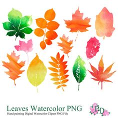 Autumn Leaves Watercolor, Digital ClipArt PNG file, Fall Design Elements for blog, Wall Art Print, red orange green leaves EasyPrintPD
