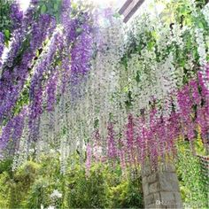 I found some amazing stuff, open it to learn more! Don't wait:https://m.dhgate.com/product/elegant-artificial-flowers-simulation-wisteria/377073840.html