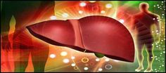 Ten Foods for a Healthy Liver help to support liver #detox.