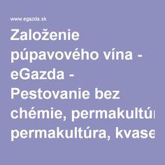 Založenie púpavového vína - eGazda - Pestovanie bez chémie, permakultúra, kvasenie a iné bohémske pôžitky.
