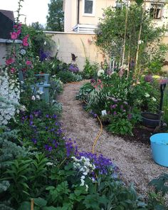The Best 20 Garden Decoration Ideas Of 2019 Small Narrow Garden Ideas, Dug Up, Gives Me Hope, Past, Centre, Give It To Me, How To Plan, Decor, Flowers