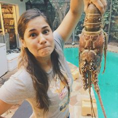 Huge Florida Lobster