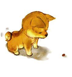 shiba inu puppy #dog #animal #shiba #inu
