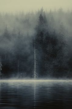 0rient-express:  Lost Lake, Whistler | by Owen Perry | Facebook. #fog