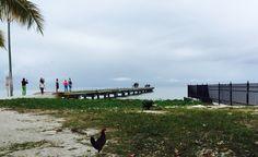 Little pier at #KeyWest Higgs Beach