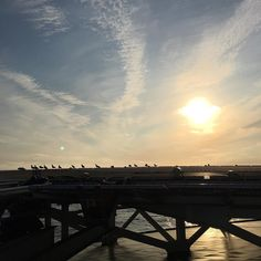 #skottland #kraken #beautiful #segals on helideck whishing us good morning #worksite #offshore #landscapeofnorway #nrkvestfold #nortrip #dreamchasersnorway #offshorelife #exploringglobe by siv_lea