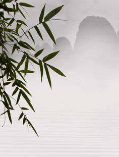 Zen ∞ When mind is still, then truth gets her chance to be heard in the purity of the silence. ~Sri Aurobindo