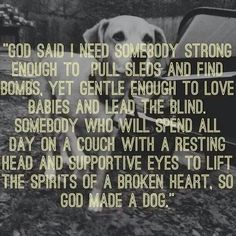 """""""God said I need somebody strong enough to pull sleds and find bombs, yet gentle enough to love babies and lead the blind.  Somebody who will spend all day on a couch with a resting head and supportive eyes to lift the spirits of a broken heart, so God made a dog."""""""