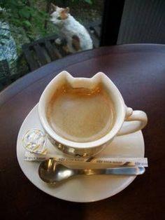 Cafe-cat ♥ Coffee This cup. I Love Coffee, Coffee Art, Coffee Break, My Coffee, Coffee Shop, Coffee Cups, Tea Cups, Coffee Lovers, Morning Coffee
