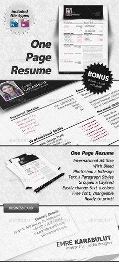 THE ULTIMATE in concise, but will not work for every job type - type of resume