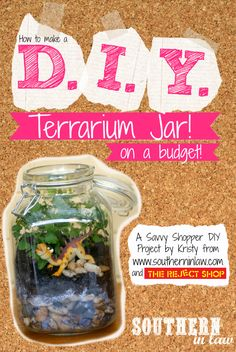 How to make a Terrarium Jar on a budget! - a fun and simple DIY project that is perfect for kids, families, christmas and holidays.  A great dollar store project/craft idea sponsored by The Reject Shop