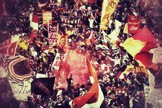 Forza Roma, Curva Sud
