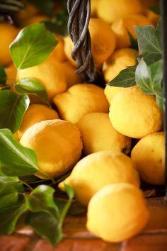 **Limones de nuestra finca, Murcia