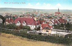 Blick auf Naumburg a. Saale, 1915