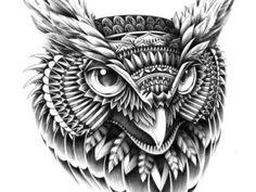 Иллюстрация совы