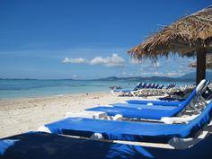 palomino island  puerto rico beach