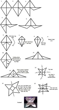 Origami Flower Diagram In English Chinese Atv Wiring 10692 Best Flowers Images 2019 Paper