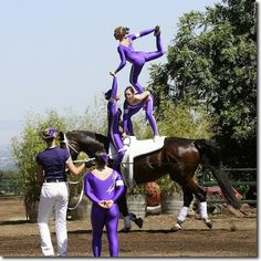 in all the years I've been riding these guys never cease to amaze me....vaulting brings a new light to the term equestrian