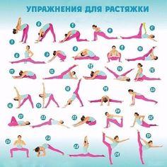упражнения для растяжки на шпагат в домашних условиях: 51 тис. зображень знайдено в Яндекс.Зображеннях
