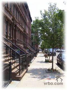 Harlems Tree Line Communities