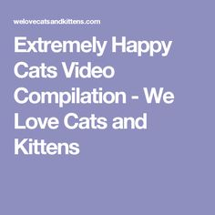 Extremely Happy Cats Video Compilation - We Love Cats and Kittens