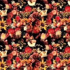 Floral Pattern Textile Patterns, Textile Prints, Cool Patterns, Beautiful Patterns, Print Patterns, Floral Prints, Floral Patterns, Textiles, Floral Print Background