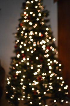 tiny lights~