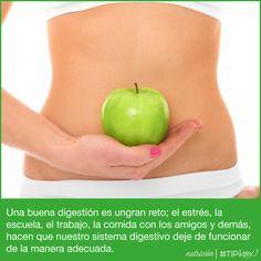 Una buena digestión, se puede lograr con la alimentación adecuada. #Tip #Healthy #Salud