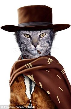 """Pets Rock™ """"Western"""" Graphic Art on Wrapped Canvas Funny Cats, Funny Animals, Cute Animals, Kitten Meowing, Famous Faces, Cat Art, Pet Portraits, Johnny Depp, Animal Pictures"""