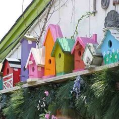 4 Compelling Reasons Why Building Birdhouses is Better than Buying Them