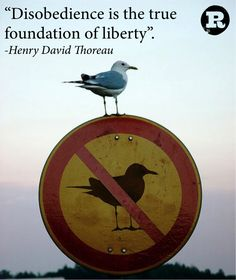 Disobedience is the true foundation of liberty. ~Henry David Thoreau