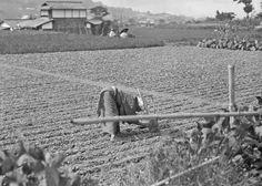 genthe japan | History in Photos: Arnold Genthe - Japan