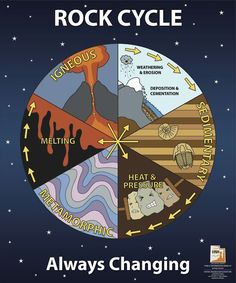 ciclo litogenetico