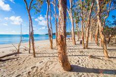 Great-Keppel-Island-Queensland (152)