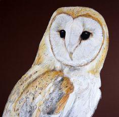 Gillian Bates, Barn Owl