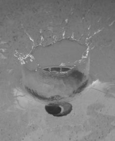 I got a greatly timed photo of my tennis ball dropping into my pool! black and white