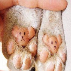 Amo patinhas de cachorro!