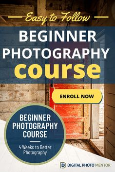 An EASY to follow beginner photography course to help you learn photography basics in a step by step manner. You'll learn the basic photography principles and photography tips, in an easy to follow step by step photography course so you can take better pictures.  4 Weeks to Better Photography is an online photography course for beginners just like you. Enroll now! #beginnerphotography #beginnerphotographycourse #beginnerphotographytips #learnphotography #photographybasics Better Photography, Learn Photography, Photography Basics, Photography Challenge, Photography Tips For Beginners, Photography Courses, Amazing Photography, Online Photography Course, Cool Pictures