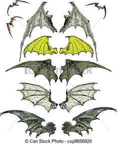 bat wings - csp8656829