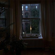 Night Aesthetic, Aesthetic Photo, Aesthetic Pictures, Dark Green Aesthetic, Dark Paradise, Cozy Room, Comfort Zone, Pretty Pictures, Future House
