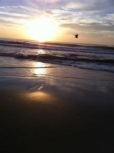 Pleasure Island, Carolina Beach, NC