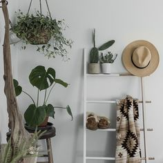 Create an insta worthy plant nook by incorporating plants of different sizes and shapes and displaying them in unique ways.   Umbra Hub Ladder is captured here balancing some lightweight cacti and other cute accessories!   Photo by @abigailmarygreen