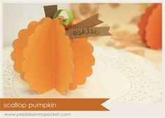 Scallop Pumpkin Kit (qty 6)