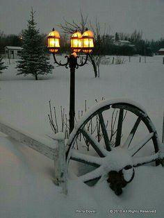 street lamp in the snow. I Love Snow, Winter Love, Winter Schnee, Winter Magic, Snow And Ice, Snowy Day, Snow Scenes, Street Lamp, Winter Beauty