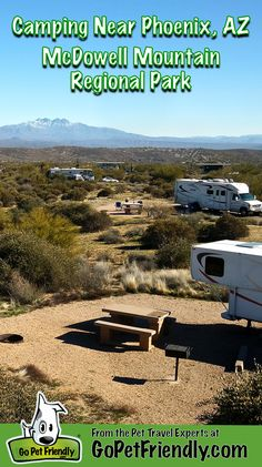 Fantastic Camping Near Phoenix - McDowell Mountain Regional Park » Go Pet Friendly Blog