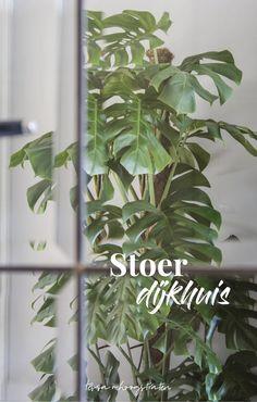 Stoer Dijkhuis - Tessa van Hoogstraten Bekijk mijn adviespakketten op de website: www.tessavanhoogstraten.nl Interieurdesign - Interieuradvies - Stoer Interieur - Home - Inspiratie - Woonkamer - Keuken - Planten - Groen - Interior inspiration